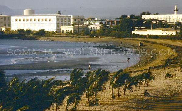 Hotel Siesta beach